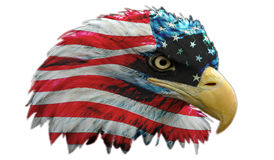 Real American Hero. A bald eagle with an american flag overlay that almost looks like a superheros mask stock illustration