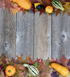 Real autumn gourds and leaves forming borders on rustic wooden b Stock Photography