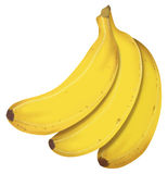 Real Bananas II. Hyper realistic illustration, you just have to download and eat it Stock Image
