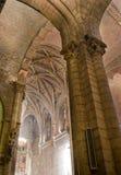 Real Basilica de San Isidoro a Leon. La Spagna Fotografie Stock Libere da Diritti