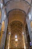 Real Basilica de San Isidoro a Leon. La Spagna Fotografia Stock Libera da Diritti