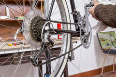 Real bicycle mechanic repairing custom fixie bike Royalty Free Stock Image
