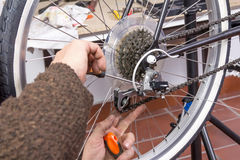 Real bicycle mechanic repairing custom fixie bike. Real bicycle mechanic repairing black custom fixie bike in the workshop Royalty Free Stock Image