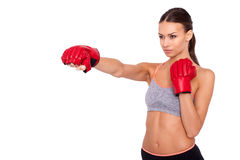 That is real  boxing. Concentrated sporty woman in sportwear and boxing gloves boxing while standing isolated on white background Royalty Free Stock Images