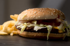 Real burger with potato fries Stock Images