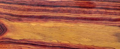 Real Burmese rosewood Exotic wood. Nature Burmese rosewood Exotic wood  For Picture Prints or background texture royalty free stock photography
