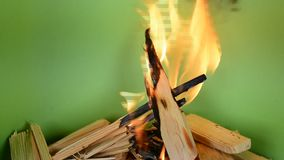 Real burning wood stock video footage