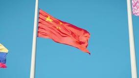Real Chinese flag. China flag. Real Chinese flag. China flag stock video