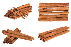 The real cinnamon from Sri Lanka Stock Photography