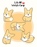Real cute Welsh Corgi set royalty free illustration