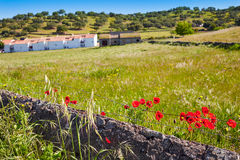 Real del Jara by Via de la Plata way in Spain Royalty Free Stock Photography