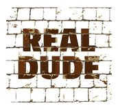 Real Dude printed on stylized brick wall. Textured inscription for your design. Vector. Illustration vector illustration