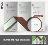 Real Estate Agent Tri-fold Brochure Stock Images