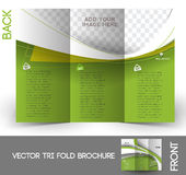 Real Estate Agent Tri-Fold Brochure Royalty Free Stock Photo
