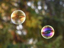 Real estate house bubble floating Stock Images