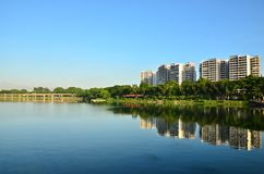 Real Estate i Singapore arkivfoton