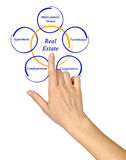 Real Estate. Presenting diagram of Real Estate Royalty Free Stock Photography