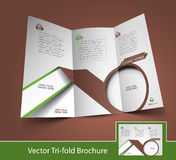 Real Estate Tri-Fold Brochure Stock Photography