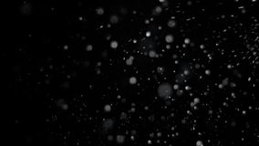 Real Falling Snow on a Black Background Royalty Free Stock Photos