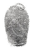 Real fingerprint Stock Image