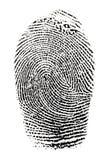 Real fingerprint Stock Image