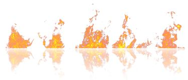 Real fire flames with reflection isolated on white background. Mockup on white of 5 flames. Real fire flames with reflection isolated on white background Stock Photo