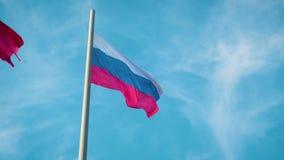 Real flaga federacja rosyjska zdjęcie wideo