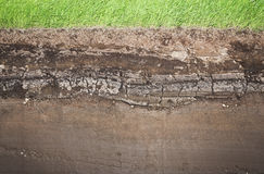 Real Grass and several underground soil layers. Cross section of green grass and underground soil layers beneath stock image