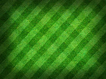 Real green grass field Royalty Free Stock Photos