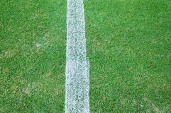 Real Green grass texture of a soccer field,soccer field outdoor Royalty Free Stock Photos
