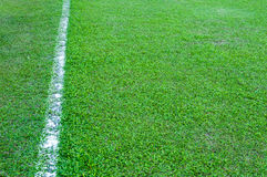 Real Green grass texture of a soccer field,soccer field outdoor Royalty Free Stock Photography