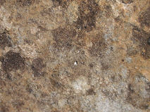 Real Grunge Rock Stone Texture Royalty Free Stock Image