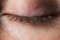A real human closed eye with eyelashes without make-up and retouching macro royalty free stock photo