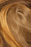 Real Human Hair Stock Images