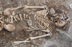 Real human skull in soil Stock Photos