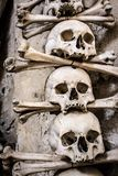 Real human skulls arranged with bones. A number of real human skulls arranged with bones on top of each other stock photography
