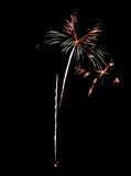Real Isolated Fireworks, Flowers Pattern Stock Image
