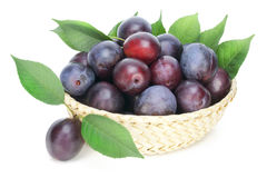 Real isolated ripe red plums Stock Photos