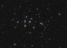 Real large star cluster M44 or NGC 2632 the Beehive Cluster in the constellation Cancer in Northern sky taken with CCD camera and Royalty Free Stock Photo