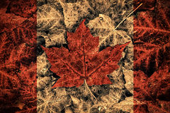 Real Leaf Canada Flag. The image of the flag of Canada constructed entirely out of genuine maple leaves from species native to that country. Leaves are wet vector illustration
