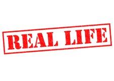 REAL LIFE Stock Photos