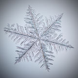 Real macro snowflake. Lying on glass stock photo