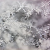 Real macro snowflakes. Lying a handful Stock Photo