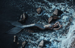 The real mermaid. Is resting on the ocean shore. Silver tail, the body is covered with scales. Creative colors Royalty Free Stock Photos