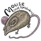 Real mouse (not hardware) Stock Image