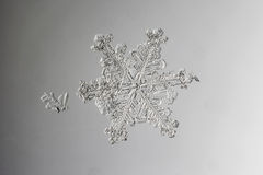 Real natural snowflake on wet glass macro photo Stock Photography