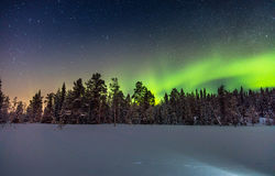 Real Northern Lights Or Aurora Borealis Above The Snowy Forest Royalty Free Stock Photography