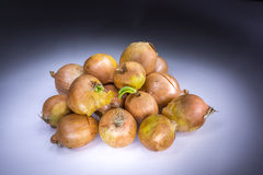 Real onions painted with light Royalty Free Stock Photo