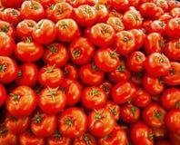 Real organic tomatoes at market stall Stock Image
