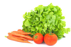 Real organic vegetables carrots, green salad, tomatoes isolated royalty free stock photo